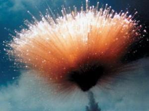 Delta rocket explodes just after lift off.
