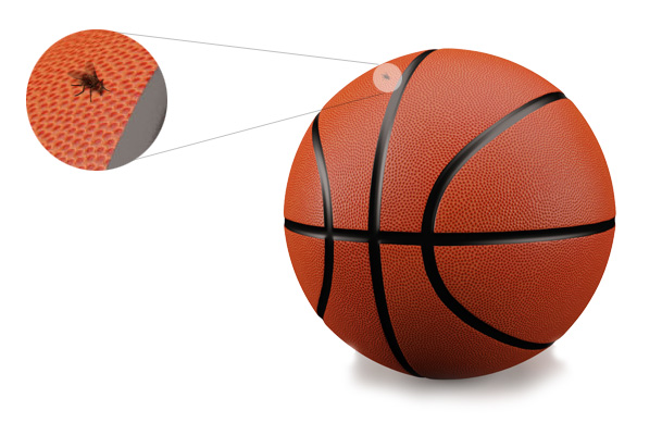 fly on basketball